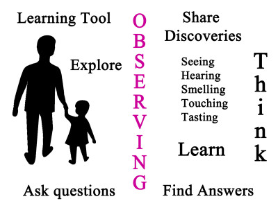 #11– Tools For Learning – Observing