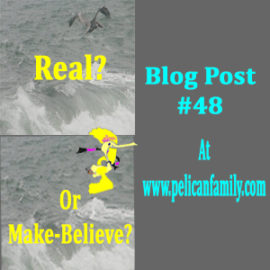#48 — Real or Make-Believe?